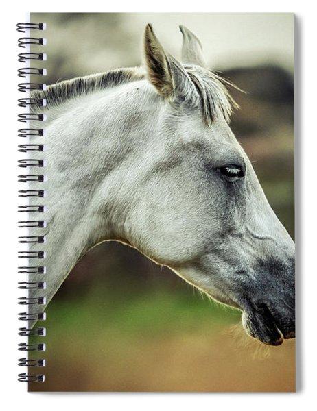 Equine Portrait White Horse Head Spiral Notebook
