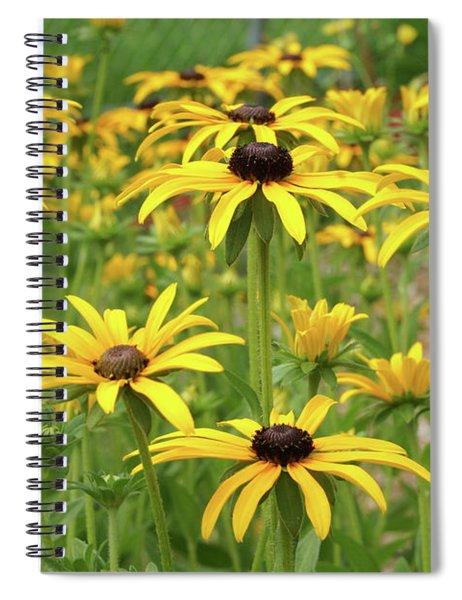 Beautiful Black Eyes Spiral Notebook