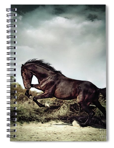 Beautiful Black Stallion Horse Running On The Stormy Sky Spiral Notebook