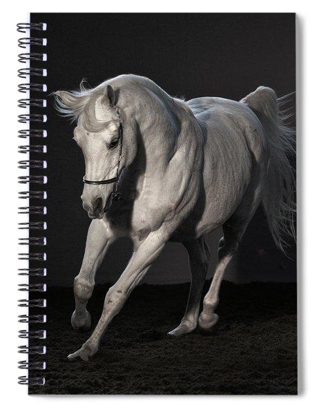 Beautiful Dancer Spiral Notebook