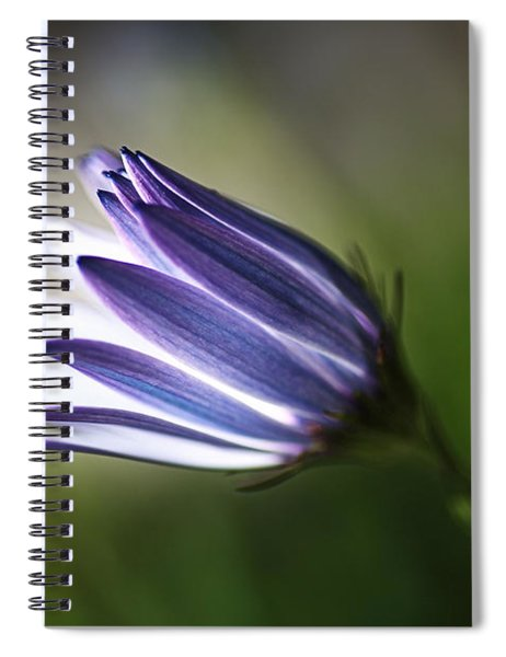 Beautiful Inner Glow Of The Daisy Spiral Notebook
