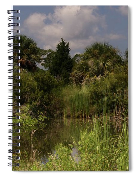 Beautiful Landscape Of Trees Spiral Notebook
