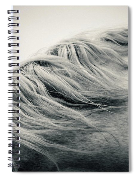Beautiful Lonely White Horse Spiral Notebook