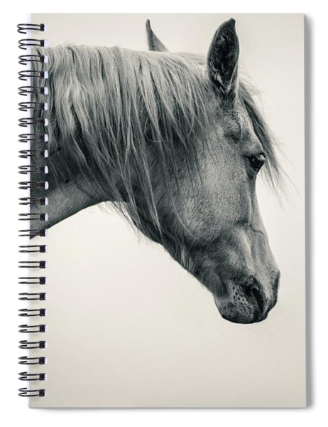 Beautiful Lonely White Horse II Spiral Notebook