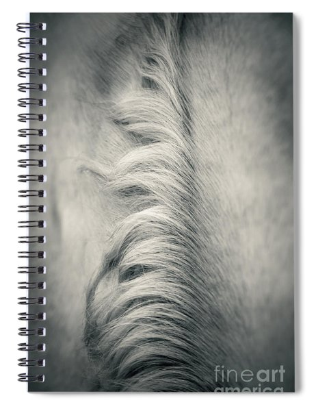 Beautiful Lonely White Horse Iv Spiral Notebook