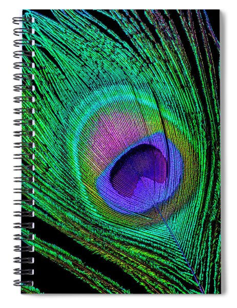 Beautiful Peacock Feather Spiral Notebook