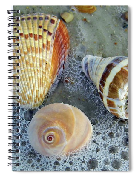Beautiful Shells In The Surf Spiral Notebook