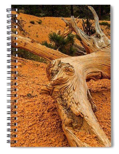 Beautiful Snag Spiral Notebook