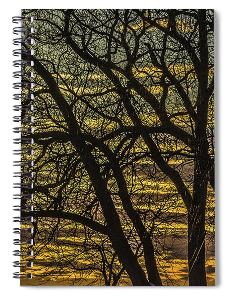 Beautiful Sunset Behind Bare Trees Spiral Notebook