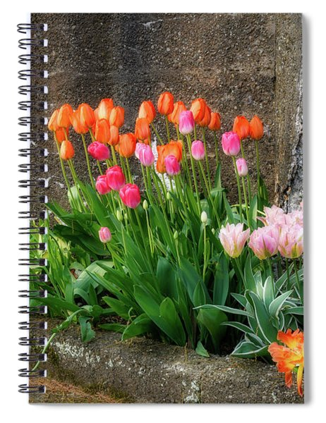 Beauty In Ruins Spiral Notebook