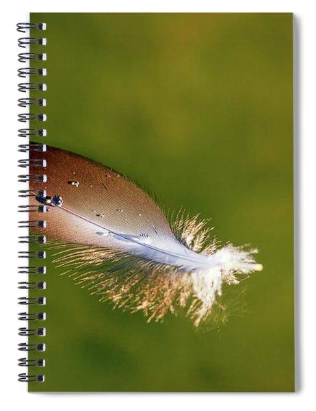 Beauty In The Simple Things Spiral Notebook by Rick Furmanek
