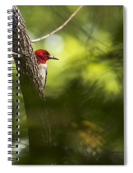 Spiral Notebook featuring the photograph Beauty In The Woods by Edward Peterson