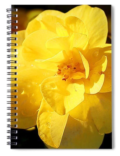 Beauty In Yellow Spiral Notebook
