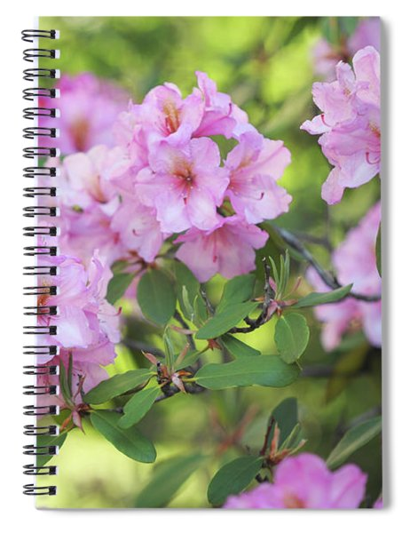 Beauty Of Pink Rhododendron Spiral Notebook