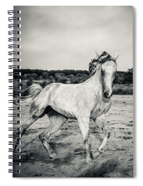 Beautyful White Horse Galloping Black And White Photography Spiral Notebook