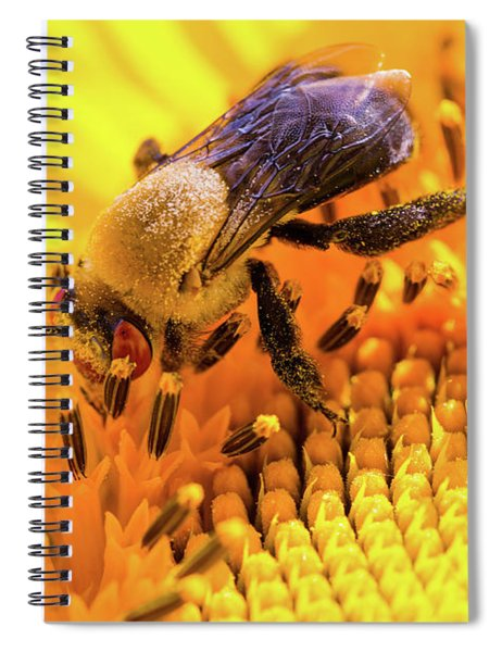 Bee And Sunflower Spiral Notebook