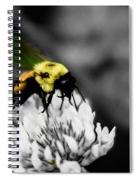 Bee Bee Spiral Notebook