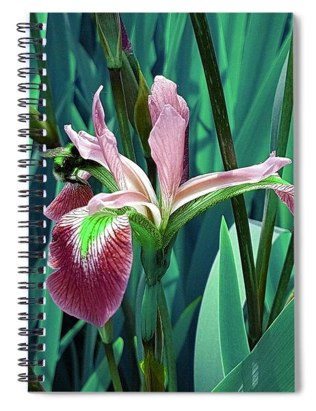 Bee Dreams In Emerald Green Spiral Notebook