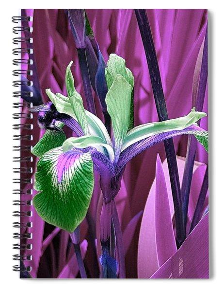 Bee Dreams In Pink Spiral Notebook