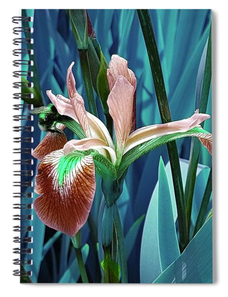 Bee Dreams In Teal Spiral Notebook