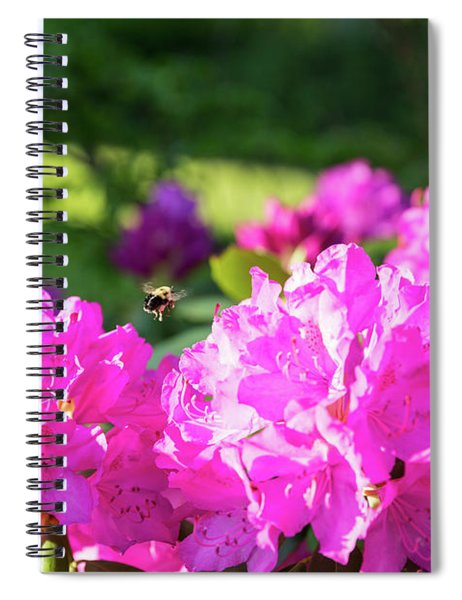 Bee Flying Over Catawba Rhododendron Spiral Notebook