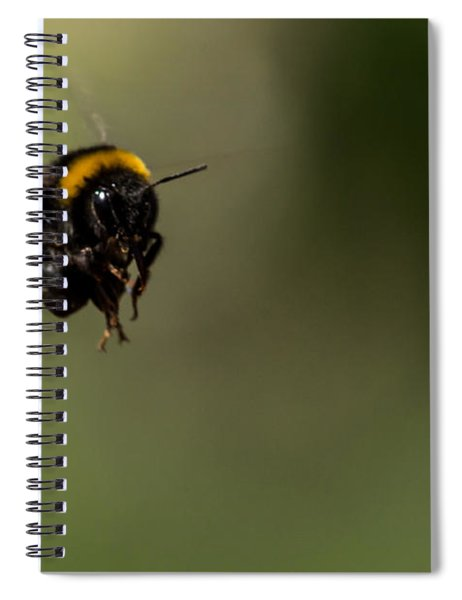 Bee Flying - View From Front Spiral Notebook