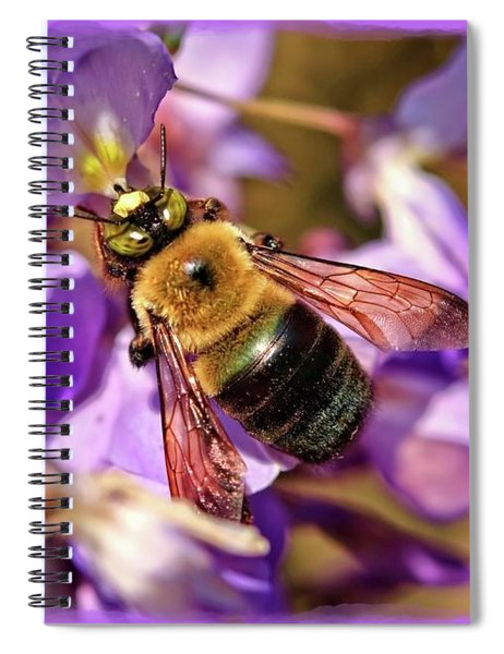 Bee In Spring Spiral Notebook