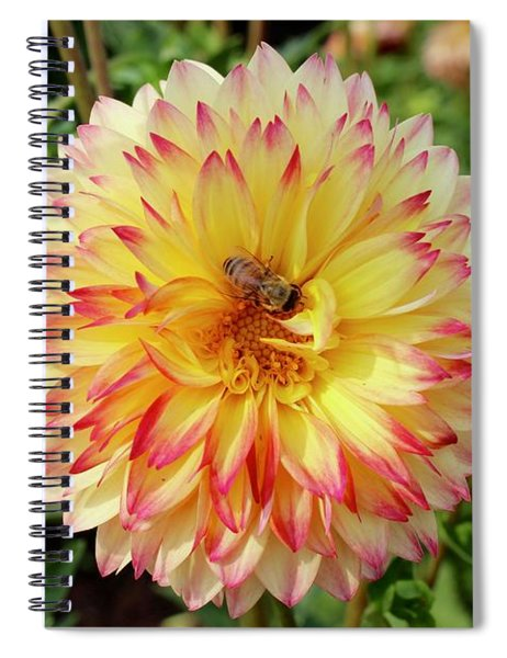 Bee In The Middle Spiral Notebook
