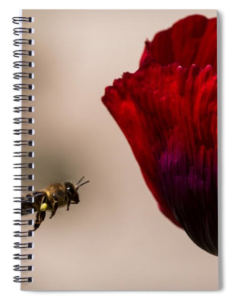 Bee Right Profile Flying To Red Flower Spiral Notebook