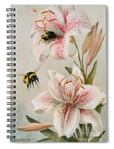 Bees And Lilies Spiral Notebook