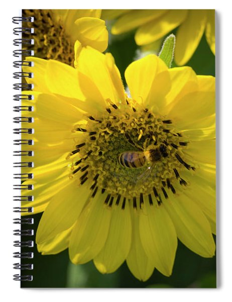 Bee's Work Is Never Done Spiral Notebook
