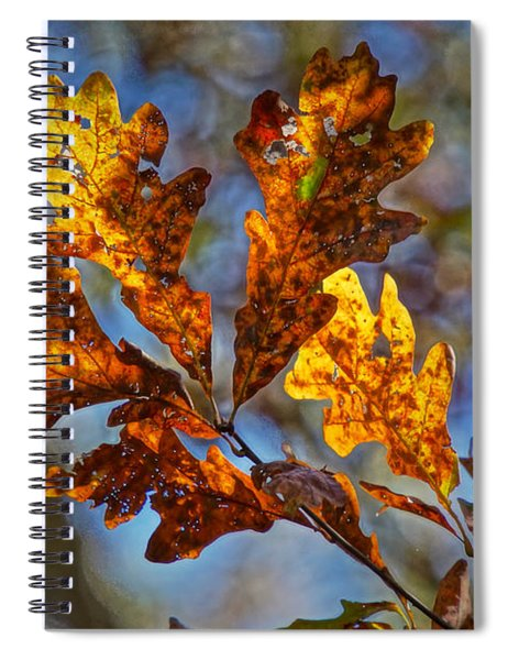 Before The Blower Spiral Notebook by Robert L Jackson