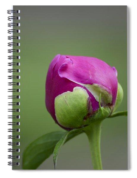 Simple Beginnings Spiral Notebook