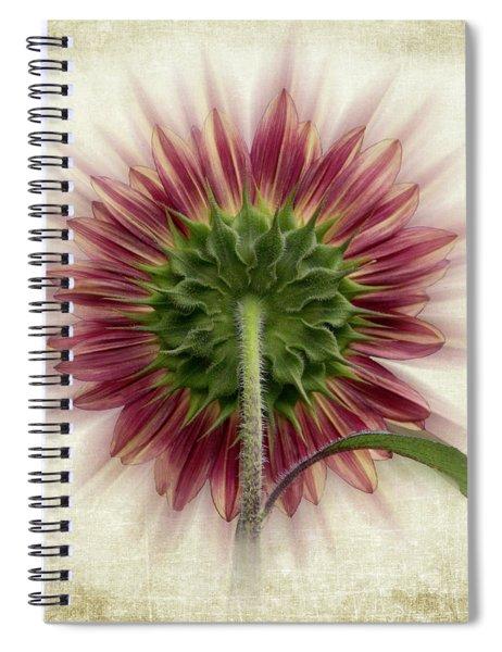 Behind The Sunflower Spiral Notebook