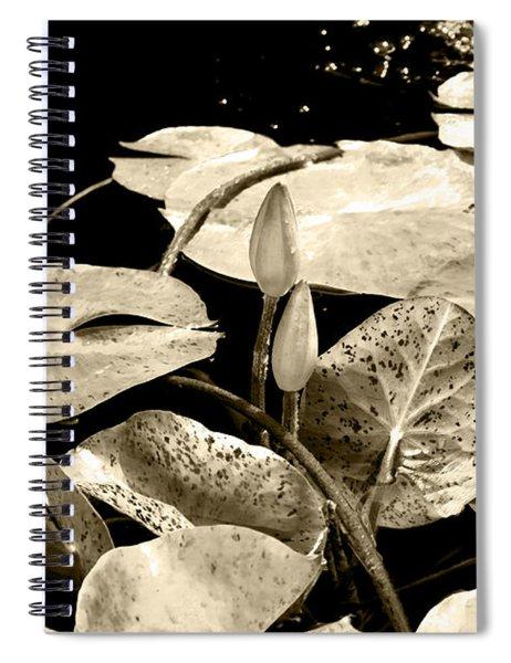 Beige Spiral Notebook