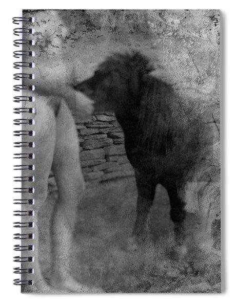 Belfast Nude With Mininature  Spiral Notebook