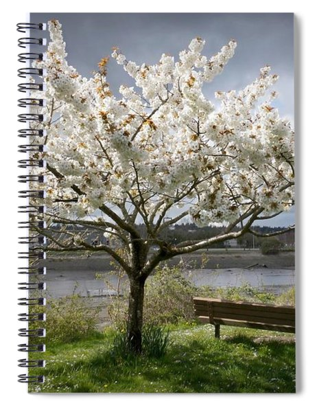 Bench And Blossoms Spiral Notebook