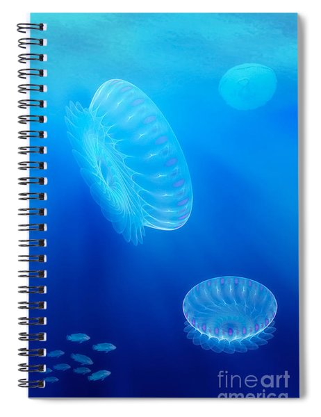 Beneath A Fractal Sea Spiral Notebook