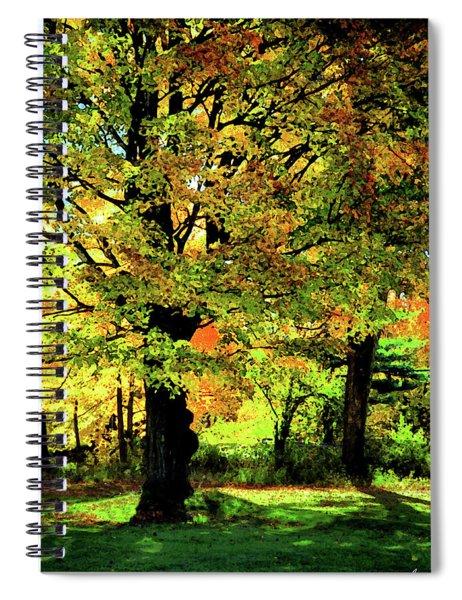 Beneath The Maple Spiral Notebook
