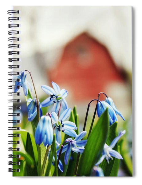 Beyond The Big Picture Spiral Notebook