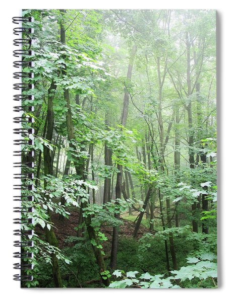 Beyond The Misty Forest Spiral Notebook
