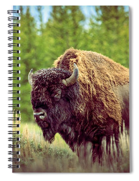 Big Daddy Spiral Notebook