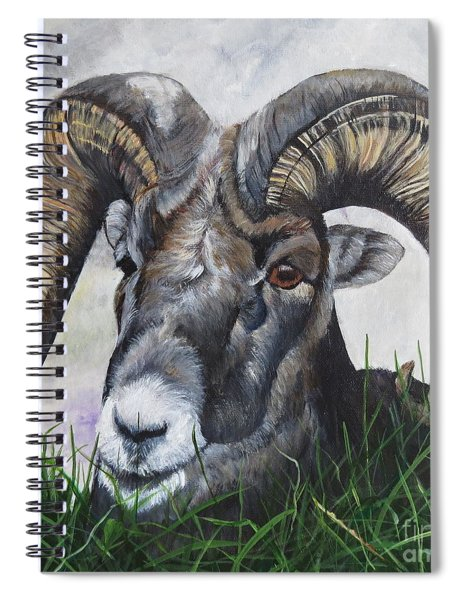 Big Horned Sheep Spiral Notebook