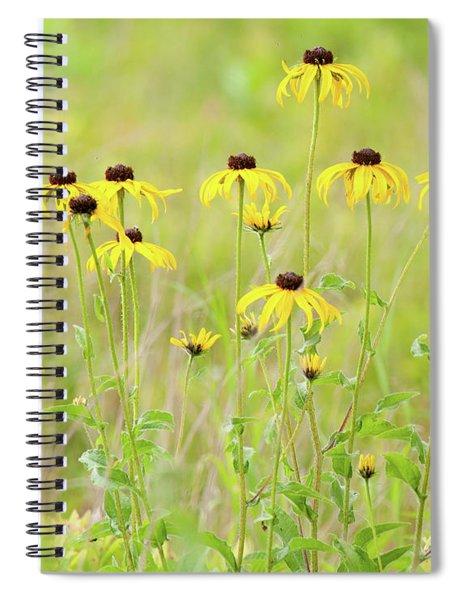 Big Meadows Black-eyed Susans Spiral Notebook