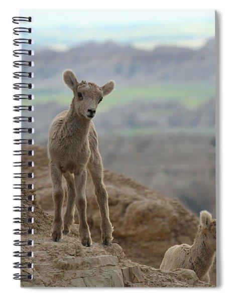 Bighorn Junior Scout Spiral Notebook
