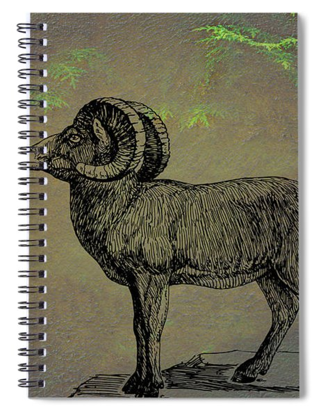 Spiral Notebook featuring the mixed media Bighorn Sheep  by Movie Poster Prints