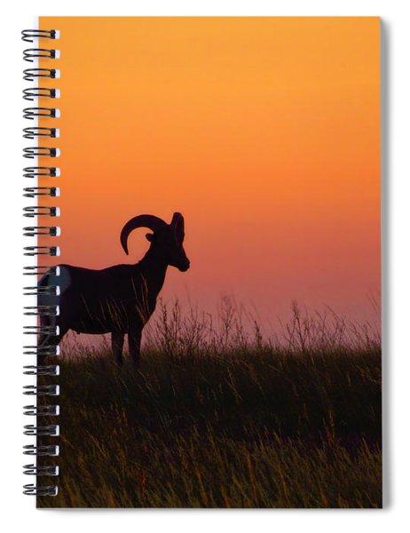 Bighorn Sunset Spiral Notebook