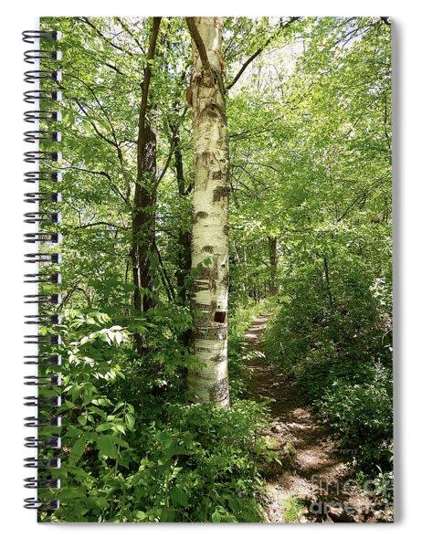 Birch Tree Hiking Trail Spiral Notebook