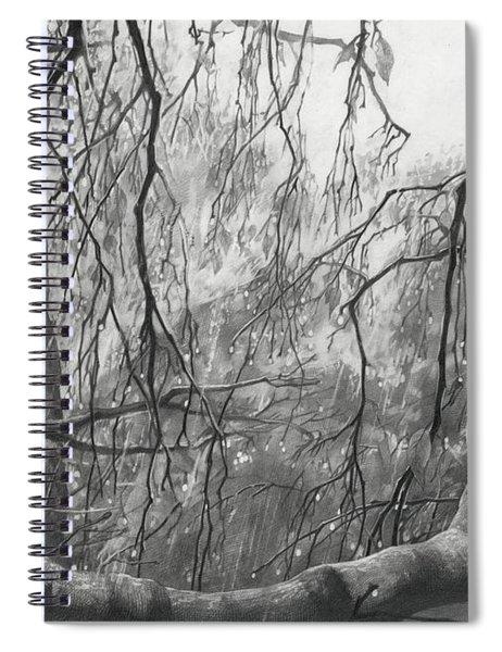 Birch Tree In Rain Spiral Notebook