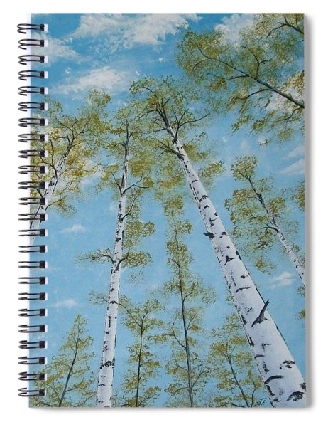 Birch Trees And Sky Spiral Notebook